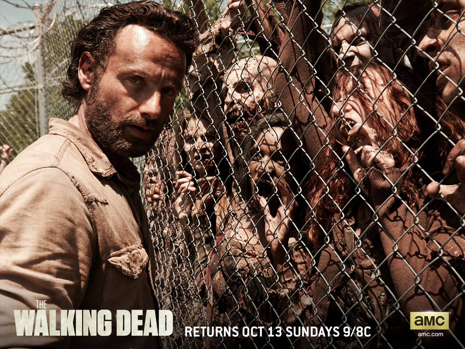 Season 4 wallpaper and background image 1600x1200 id444304 the walking dead zombie wallpapers id444304 voltagebd Gallery