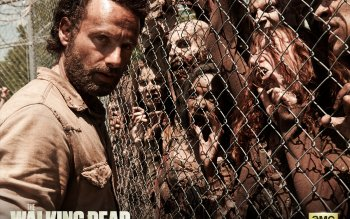 Televisieprogramma - The Walking Dead Wallpapers and Backgrounds ID : 444304
