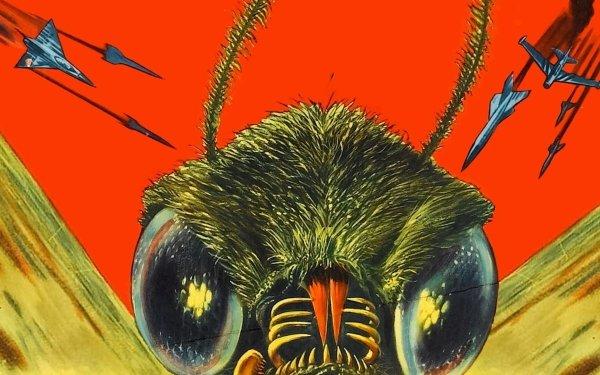 Movie Mothra Godzilla HD Wallpaper | Background Image