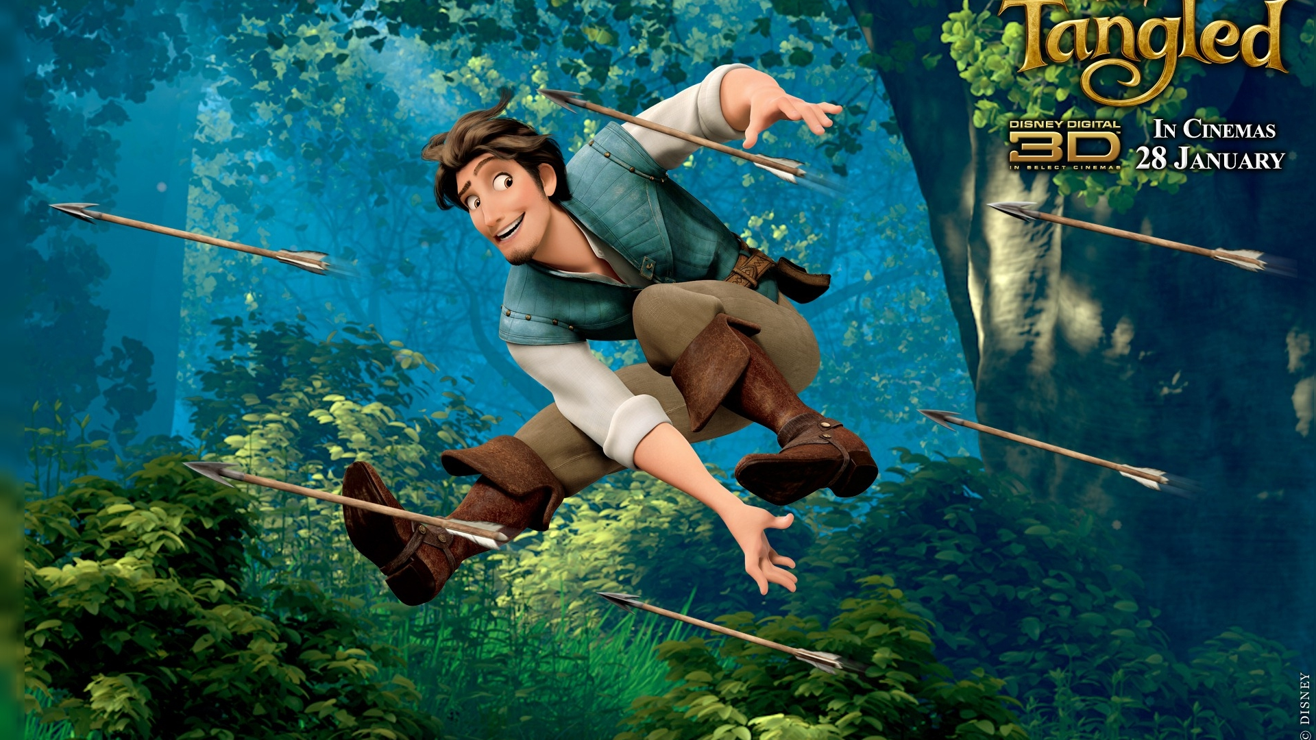 Tangled Hd Wallpaper Background Image 1920x1080 Id447028