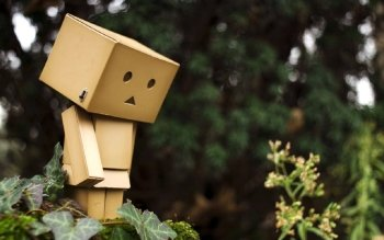 Diversen - Danbo Wallpapers and Backgrounds ID : 447233