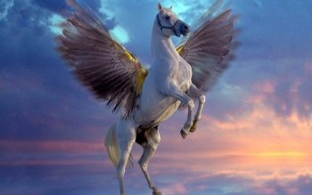 Fantasy - Pegasus Wallpapers and Backgrounds ID : 448923