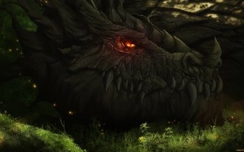 Fantasy - Dragon Wallpapers and Backgrounds ID : 449579
