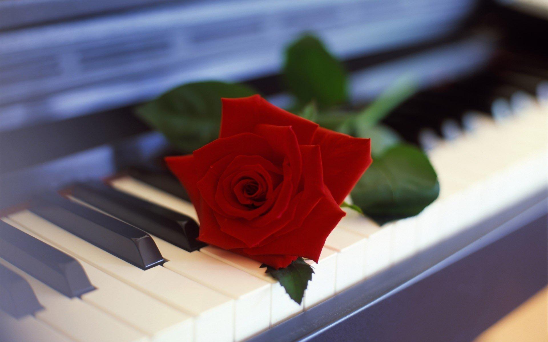 xpx Piano Desktop Wallpaper