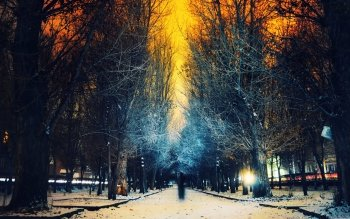 Photography - Winter Wallpapers and Backgrounds ID : 463408