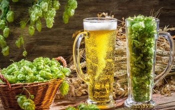 Food - Beer Wallpapers and Backgrounds ID : 464606