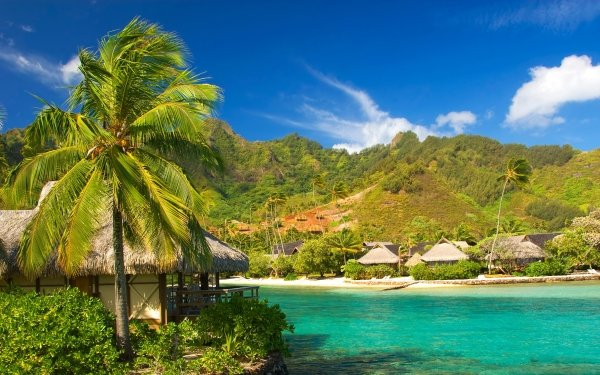 Photography Tropical Cottage HD Wallpaper | Background Image