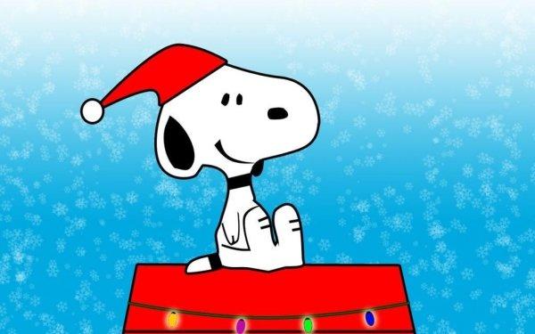 Comics Peanuts Snoopy HD Wallpaper   Background Image