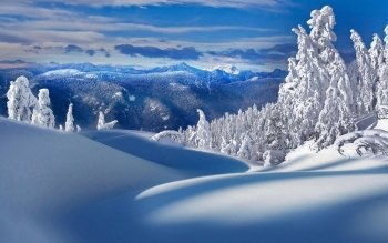 Earth - Winter Wallpapers and Backgrounds ID : 470128