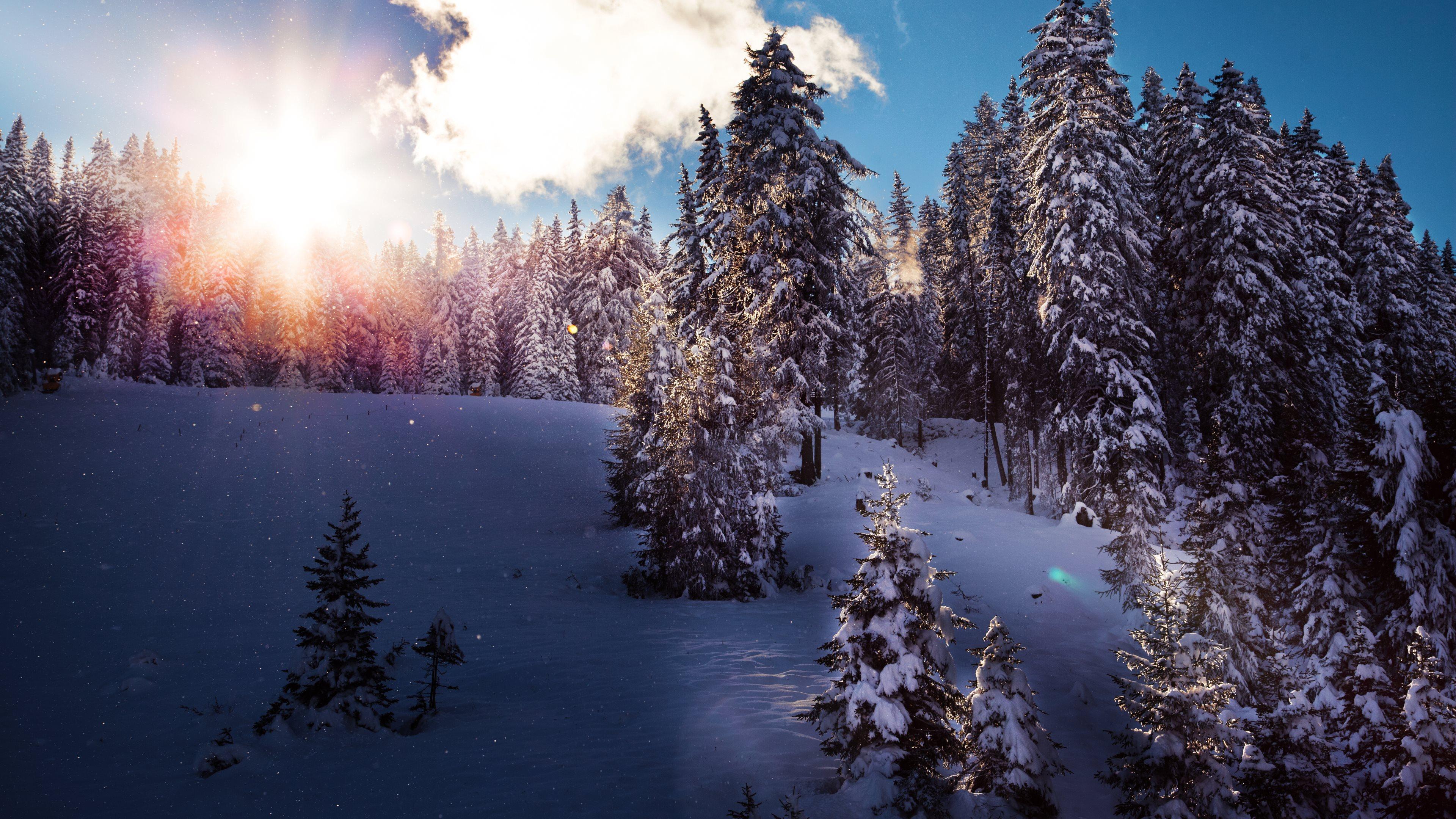 Winter 4k ultra hd wallpaper background image - Desktop wallpaper 4k ultra hd ...
