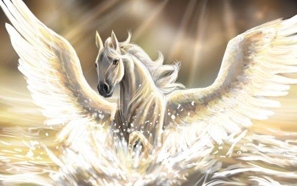 Fantaisie Pégase Animaux Fantastique Fond d'écran HD | Image