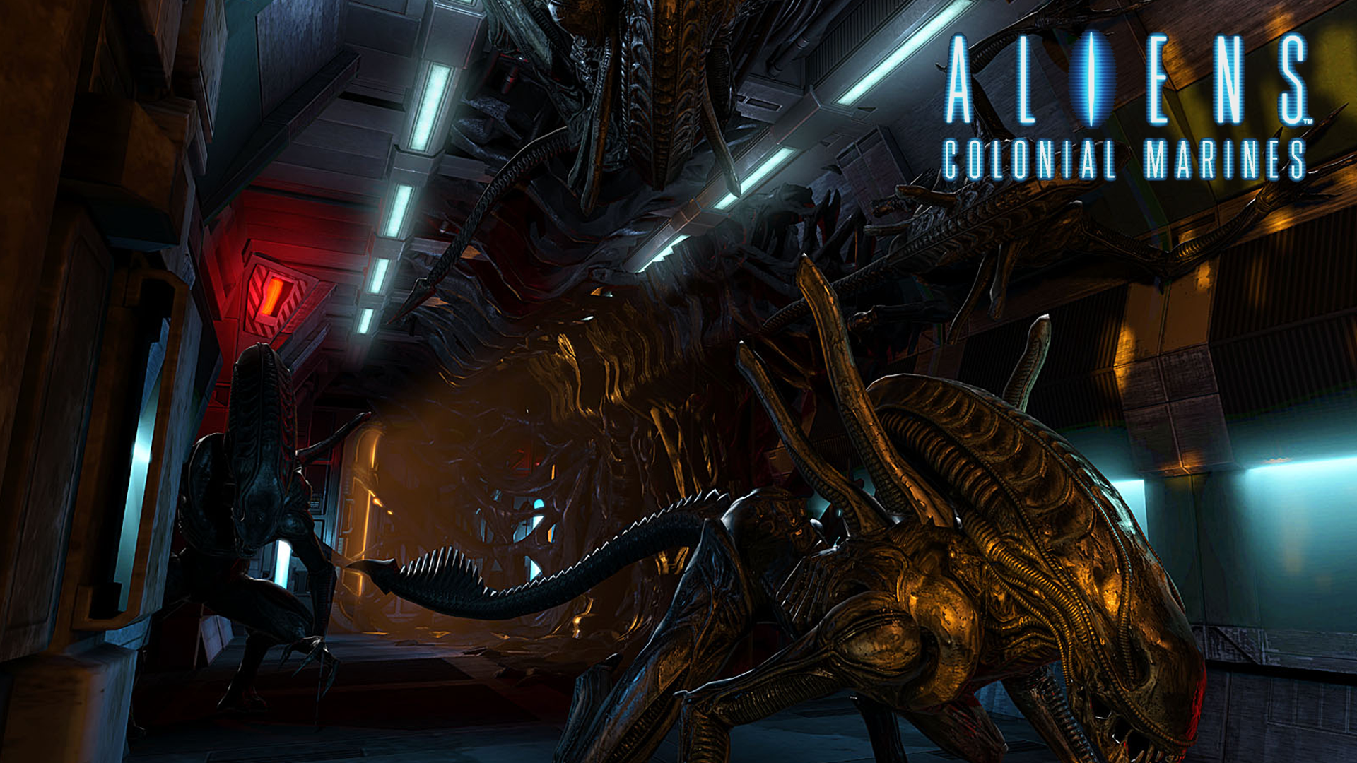 aliens colonial marines hd wallpaper background image