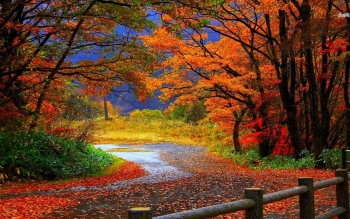 Earth - Autumn Wallpapers and Backgrounds ID : 490144