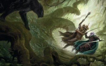 Género Fantástico - Dungeons & Dragons Wallpapers and Backgrounds ID : 491227
