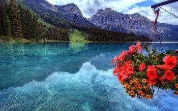 Earth - Lake Wallpapers and Backgrounds ID : 495856