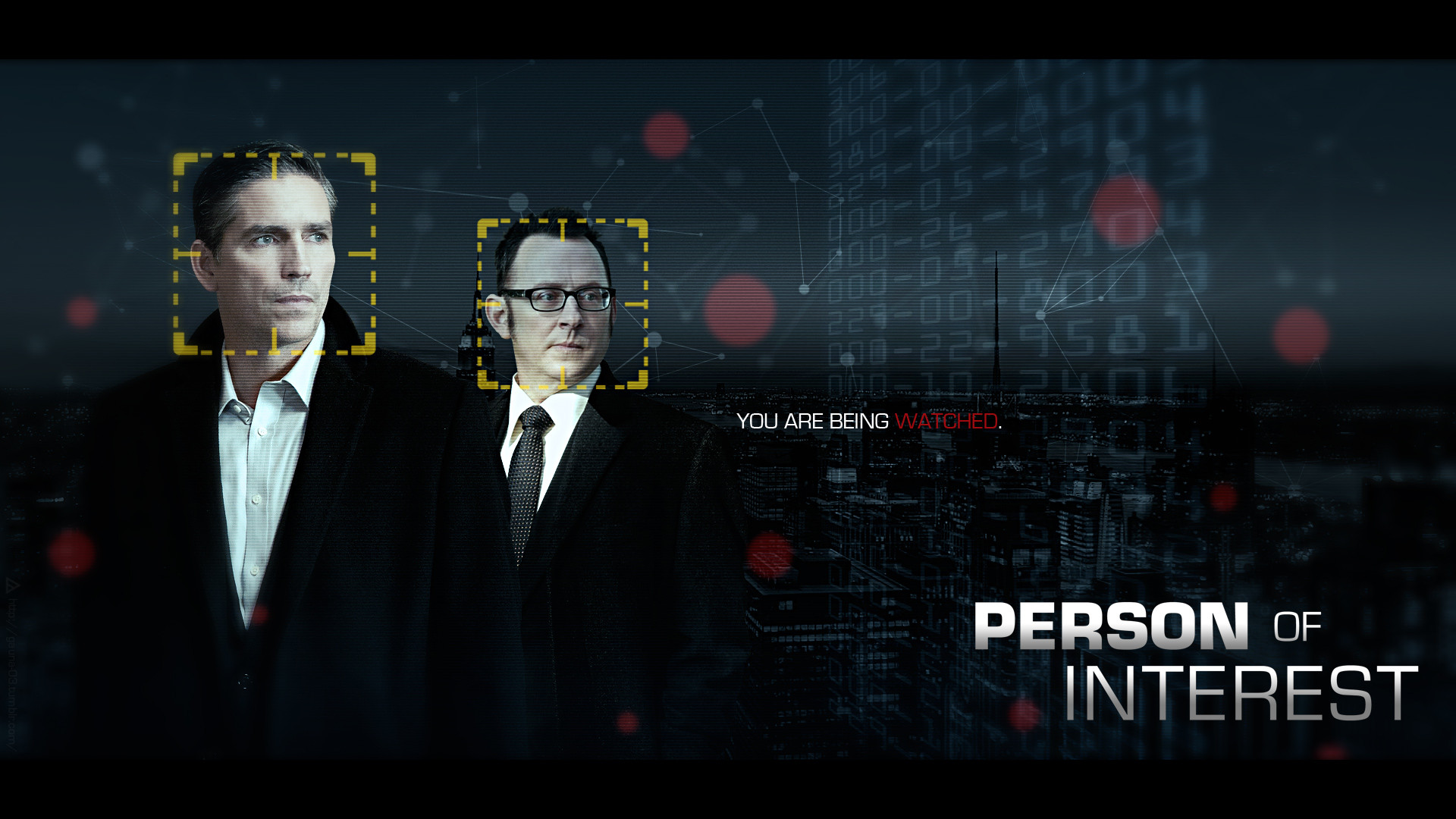 Person of Interest 496266