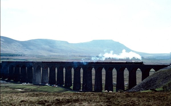 Vehicles Train Steam Train Bridge HD Wallpaper   Background Image