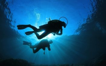 Sports - Diving Wallpapers and Backgrounds ID : 513906