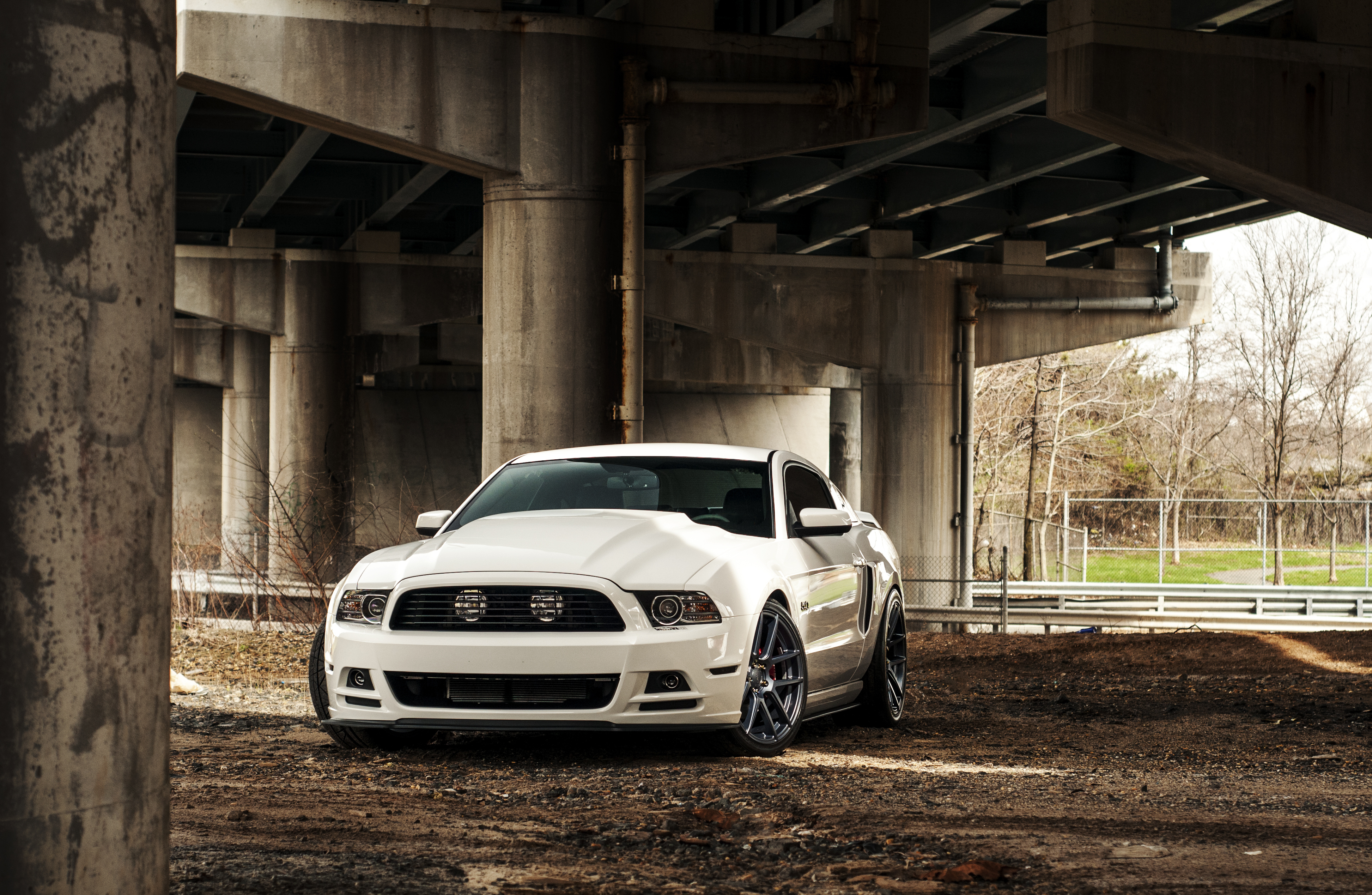 132 4K Ultra HD Ford Mustang Wallpapers