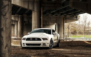 Vehicles - Ford Mustang Wallpapers and Backgrounds ID : 514472
