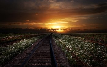 Man Made - Railroad Wallpapers and Backgrounds ID : 514565