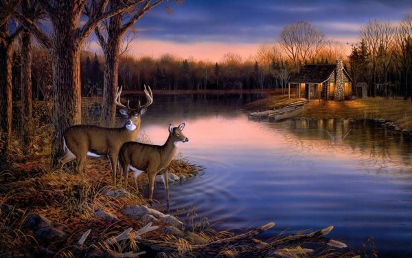 Animal Deer Artistic HD Wallpaper   Background Image