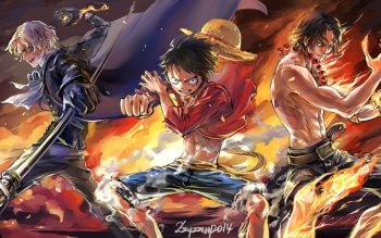 Anime - One Piece Wallpapers and Backgrounds ID : 516664