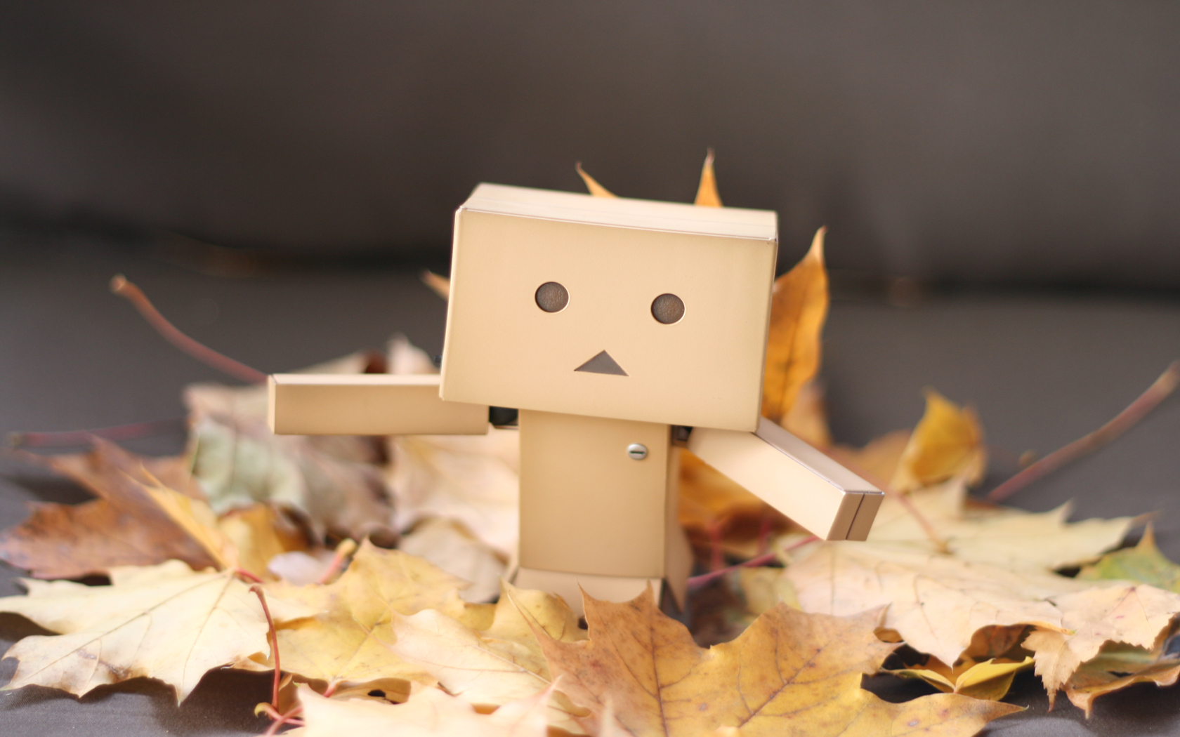 cardboard robot wallpaper hd - photo #20