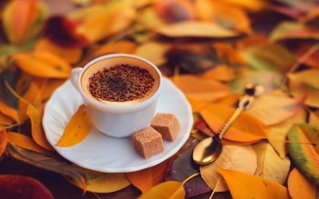 Alimento - Coffee Wallpapers and Backgrounds ID : 529831
