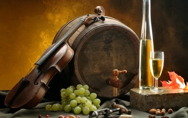 Photography Still Life Wine Violin HD Wallpaper | Background Image