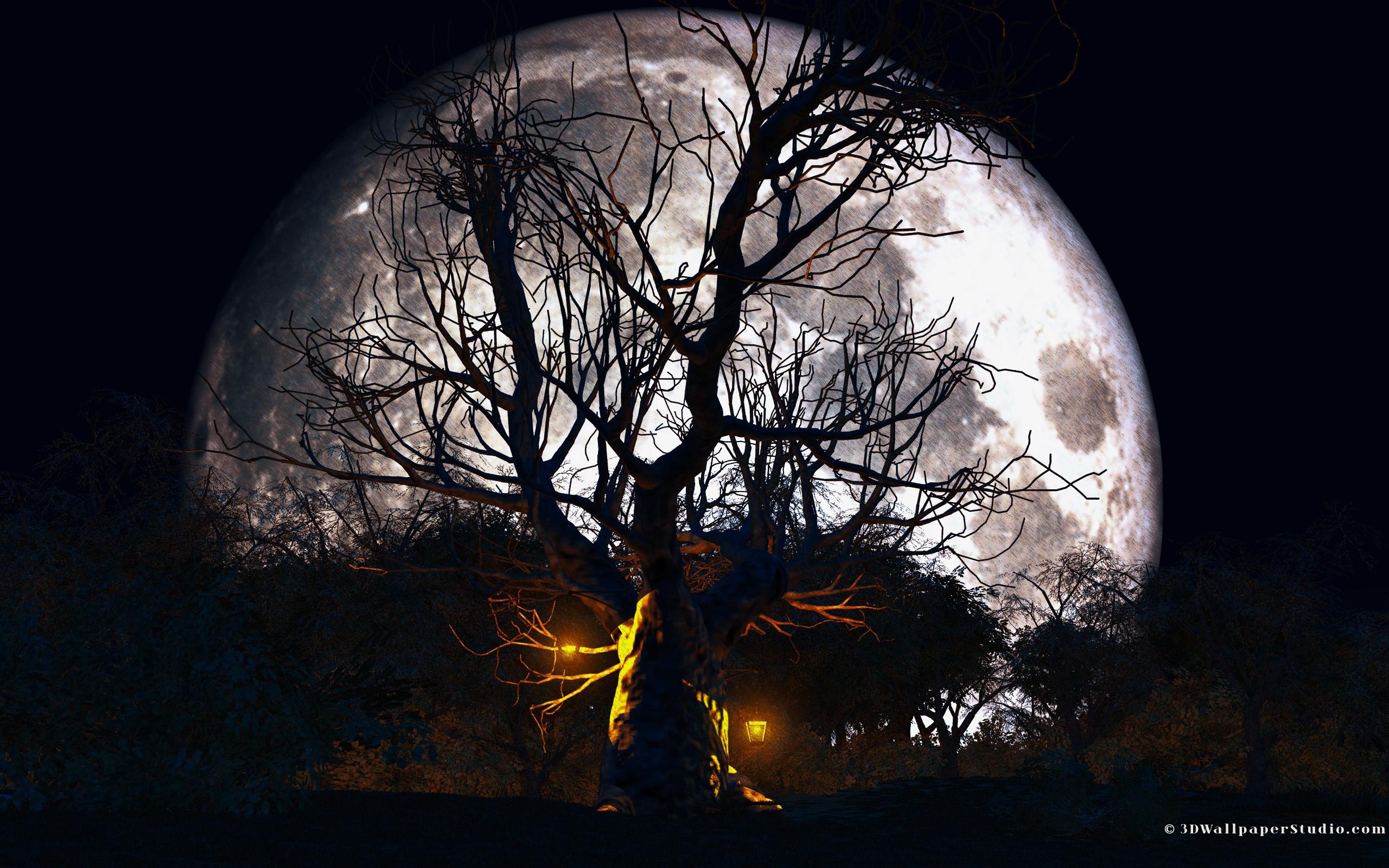 Halloween HD Wallpaper   Background Image   2560x1600   ID ...