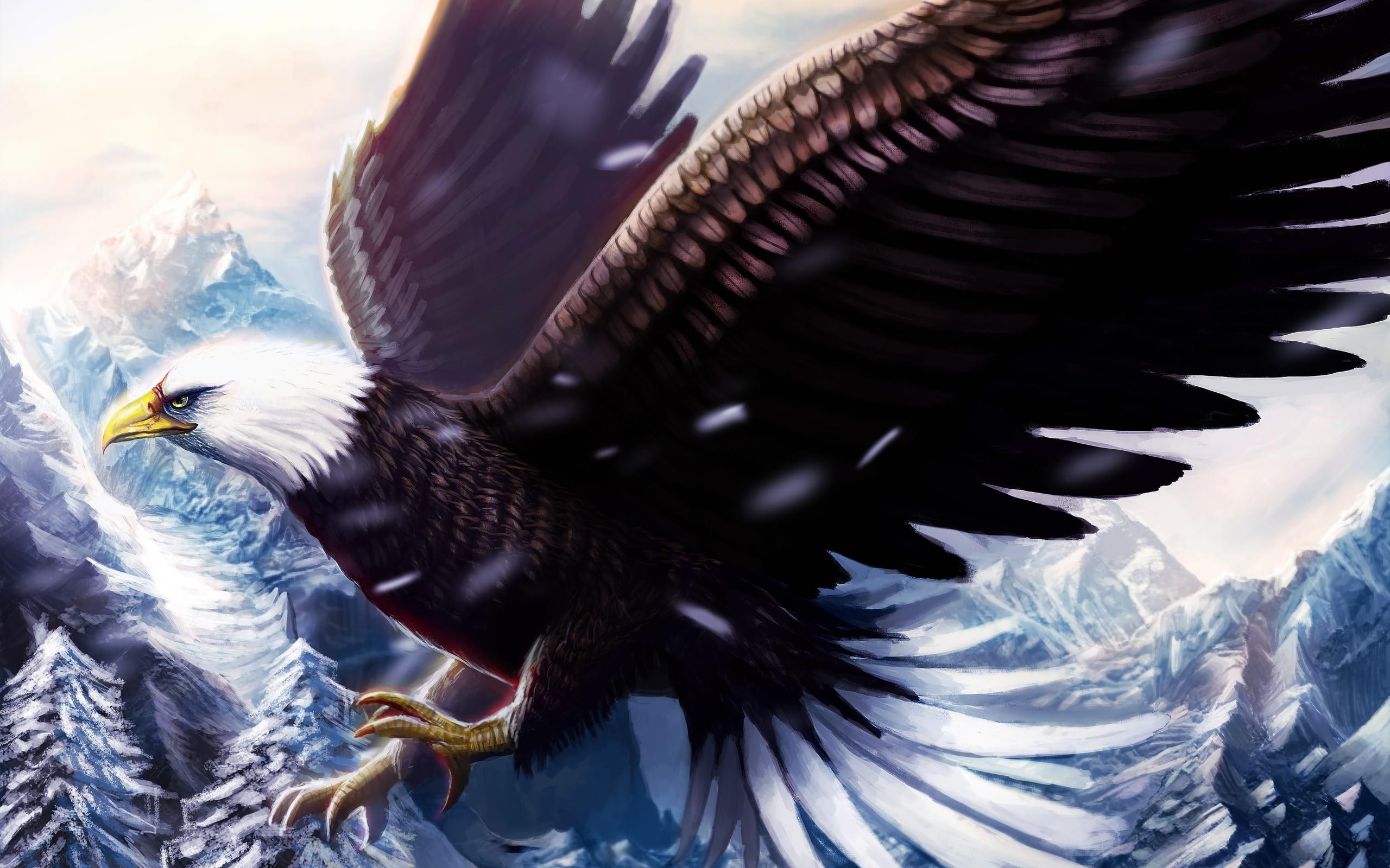 wallpaper eagle, art, beak HD : Widescreen : High ...