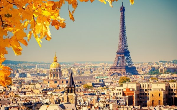 Man Made Eiffel Tower Monuments Paris France Foliage HD Wallpaper | Background Image