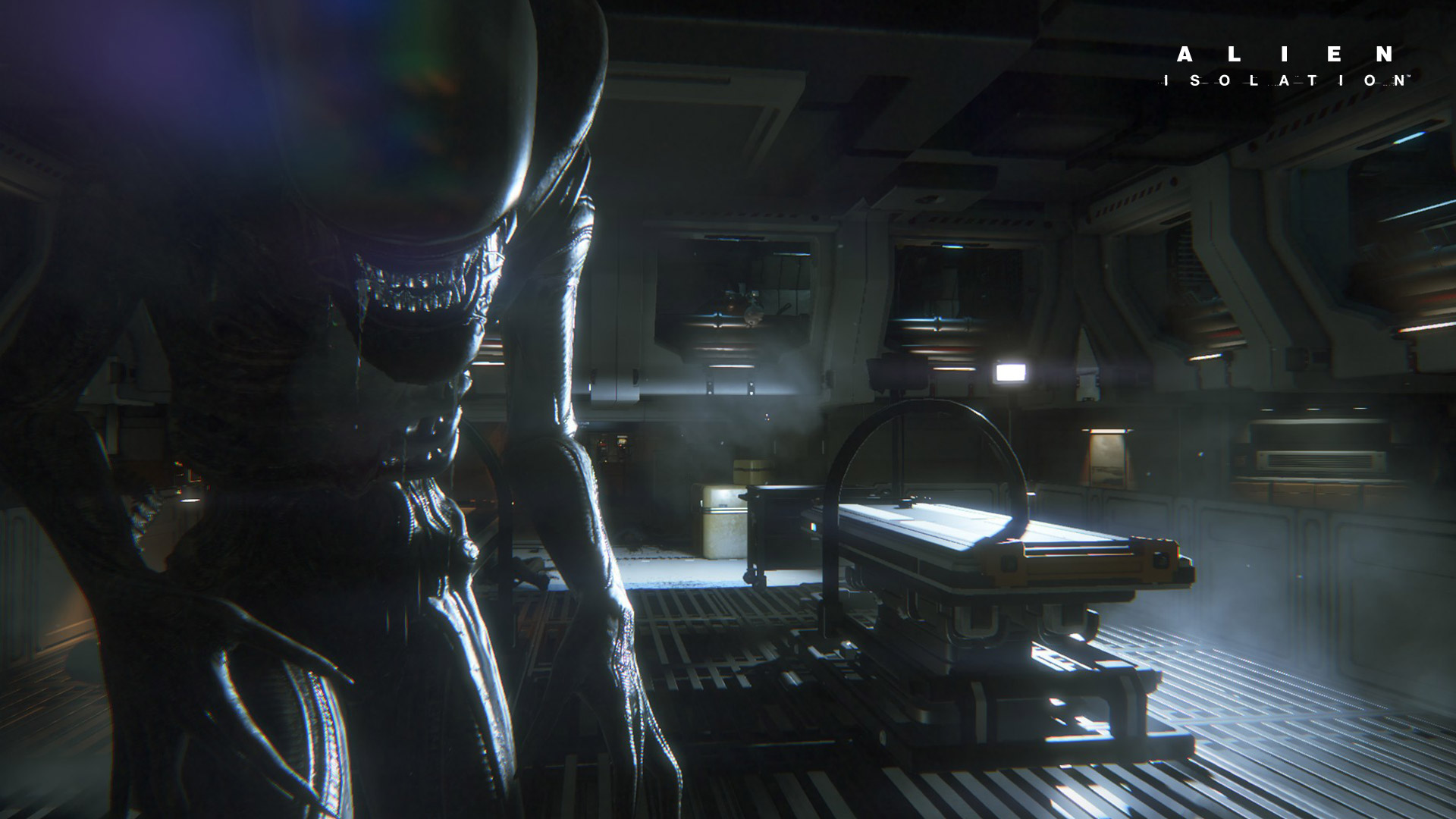 Xenomorph Full HD Wallpaper and Background | 1920x1080