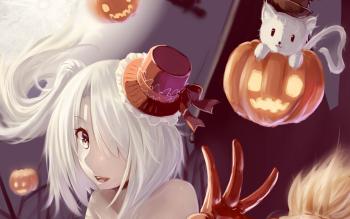 HD Wallpaper | Background ID:552023
