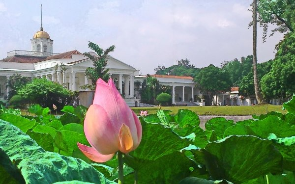 Man Made Bogor Palace Palaces Indonesia HD Wallpaper | Background Image