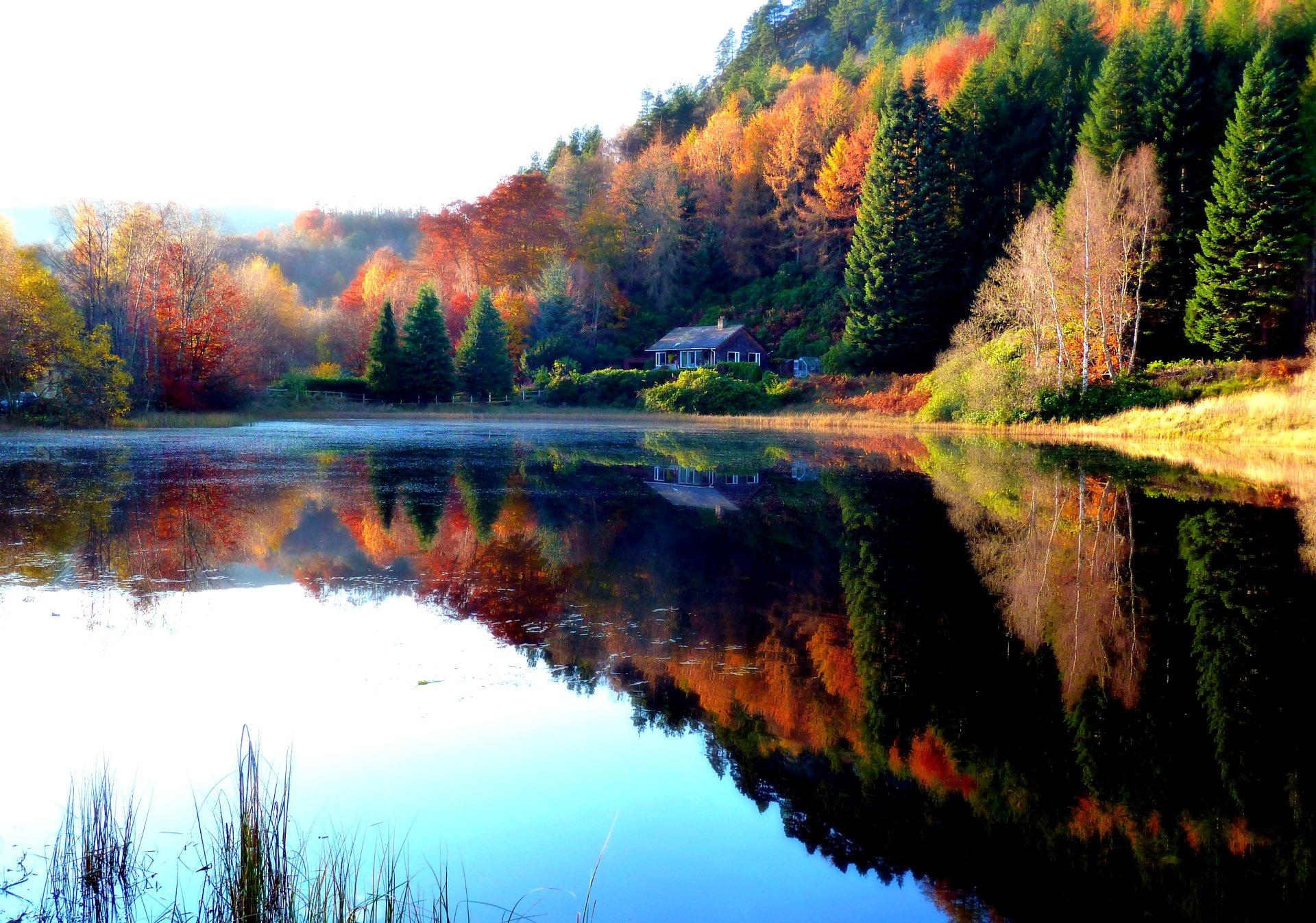 Fall HD Wallpaper | Background Image | 2597x1822 | ID ...