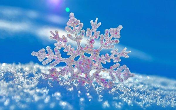 Tierra/Naturaleza Invierno Azul Copo de nieve Snow Fondo de pantalla HD | Fondo de Escritorio