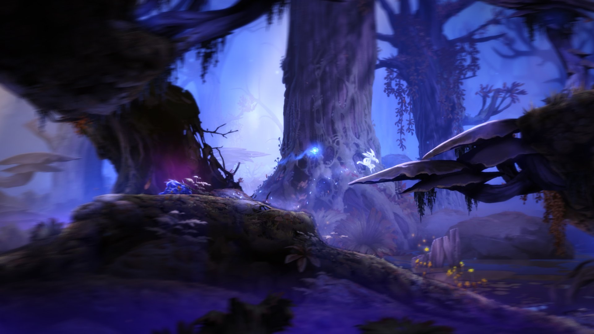Ori And The Blind Forest Computer Wallpapers Desktop