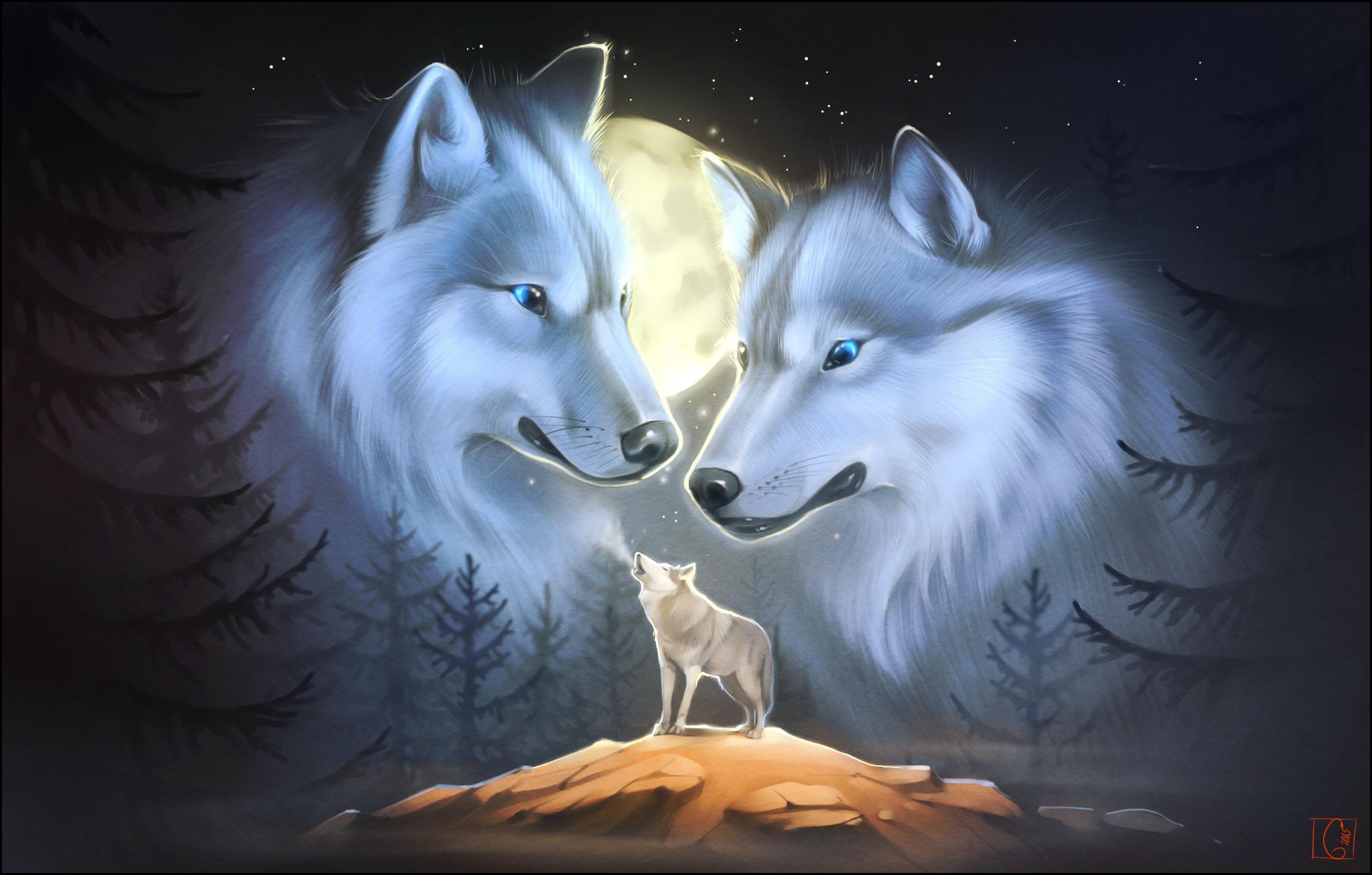 Рабочий стол обои волк