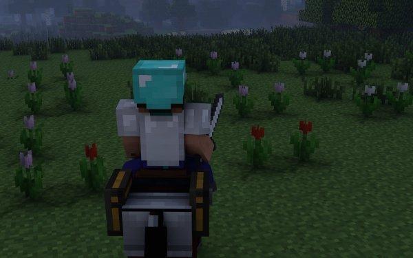 Jeux Vidéo Minecraft Brouillard Cheval Fond d'écran HD | Image