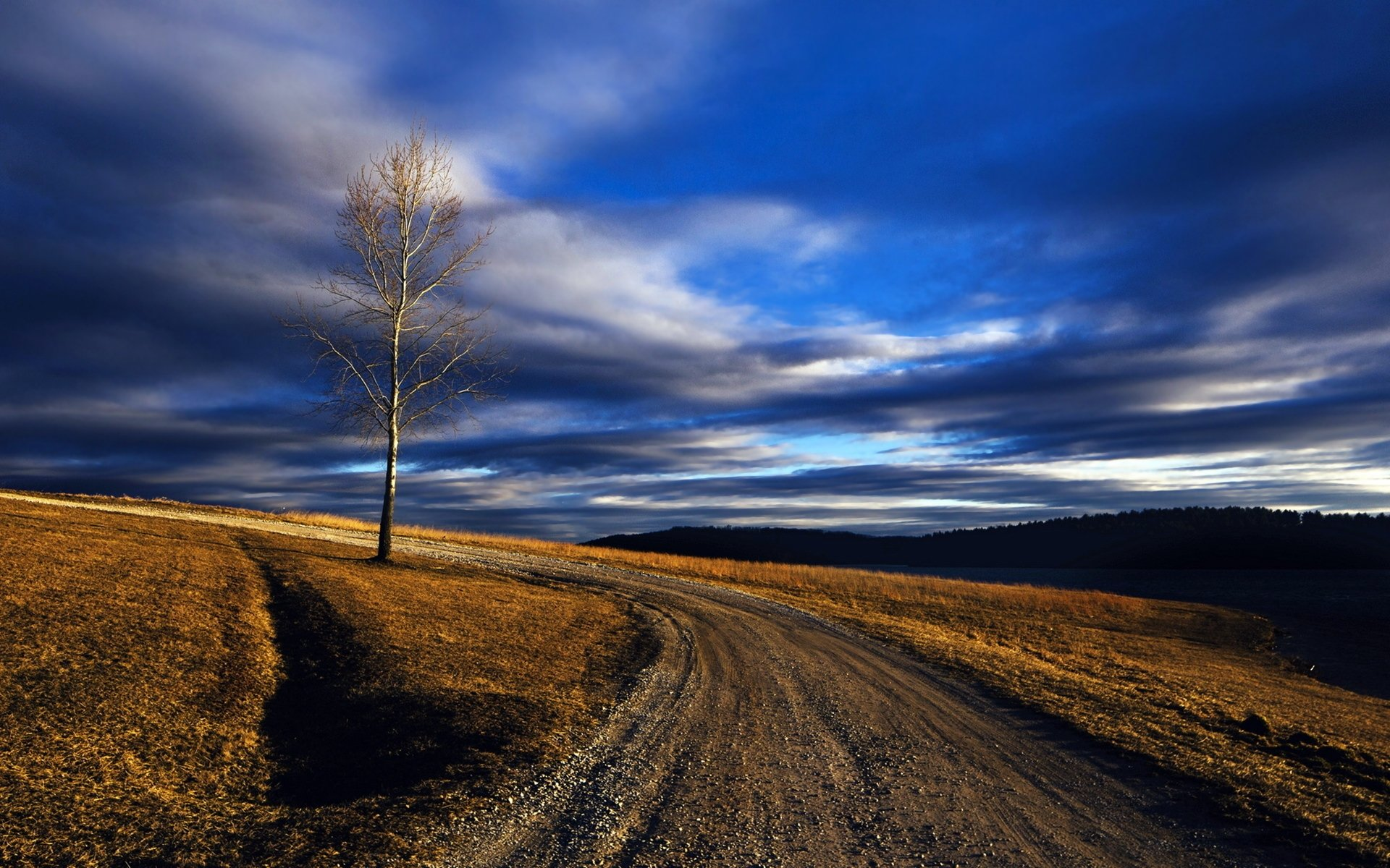 Photography - Landscape  Hill Countryside Road Tree Earth Nature Wallpaper