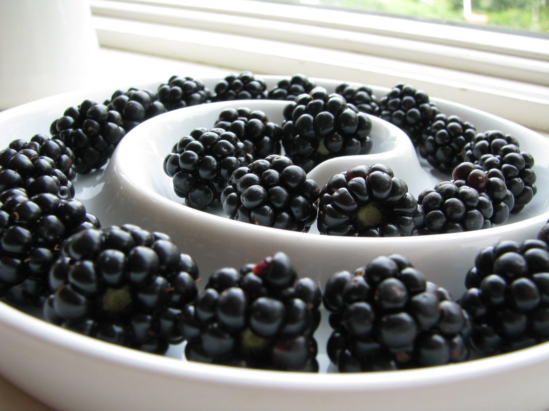Blackberry fond d 39 cran and arri re plan 1900x1425 id for Photo ecran blackberry