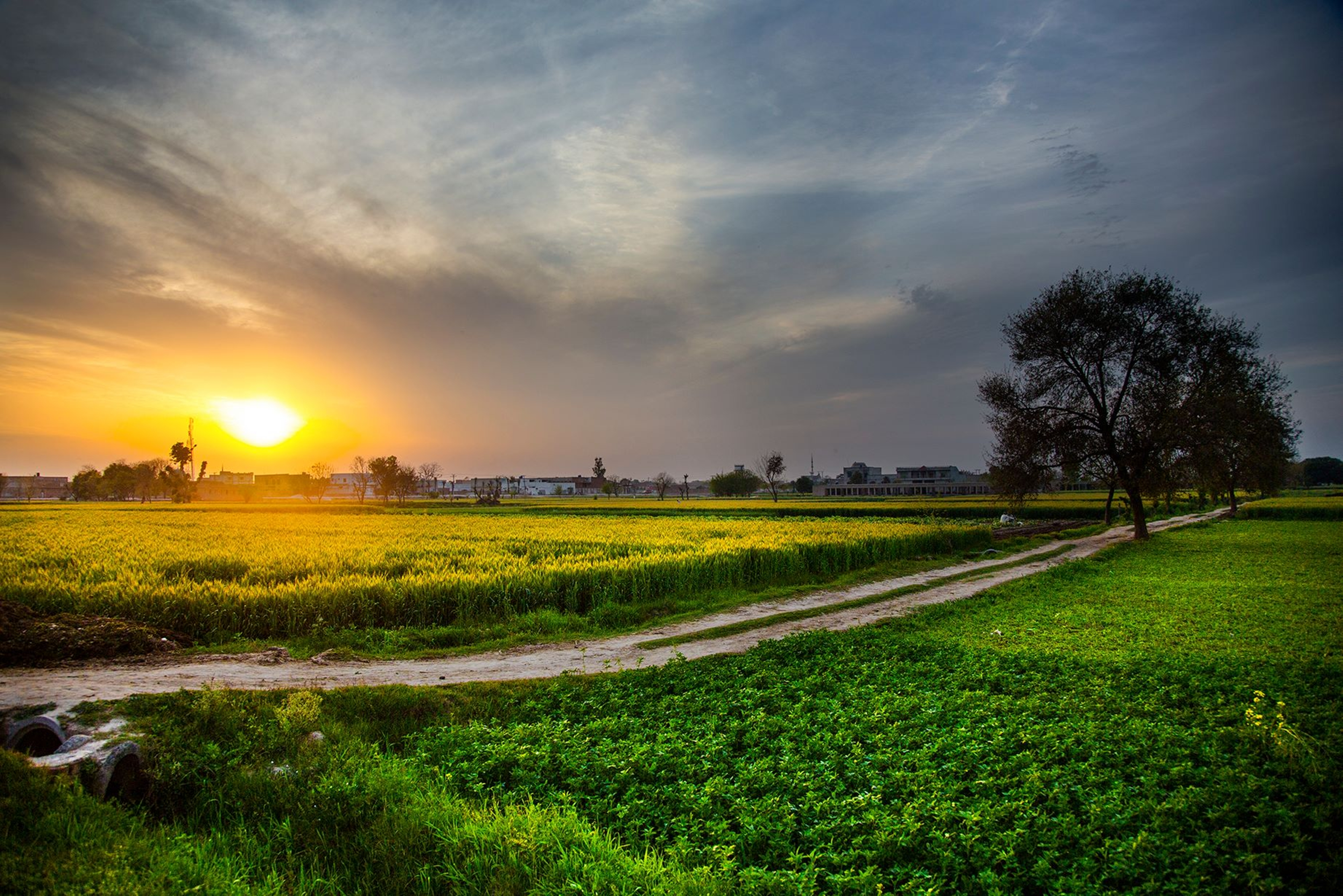 Sunset 4k ultra hd wallpaper and background image for Farmhouse wallpaper