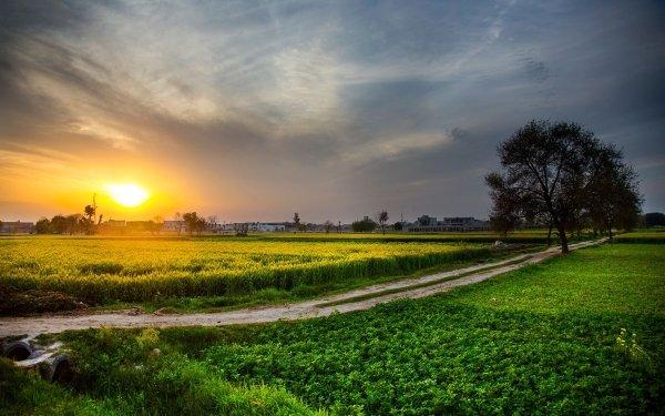 Fotografía Atardecer Paisaje Naturaleza Tierra Campo Countryside Granja Pakistan Fondo de pantalla HD | Fondo de Escritorio