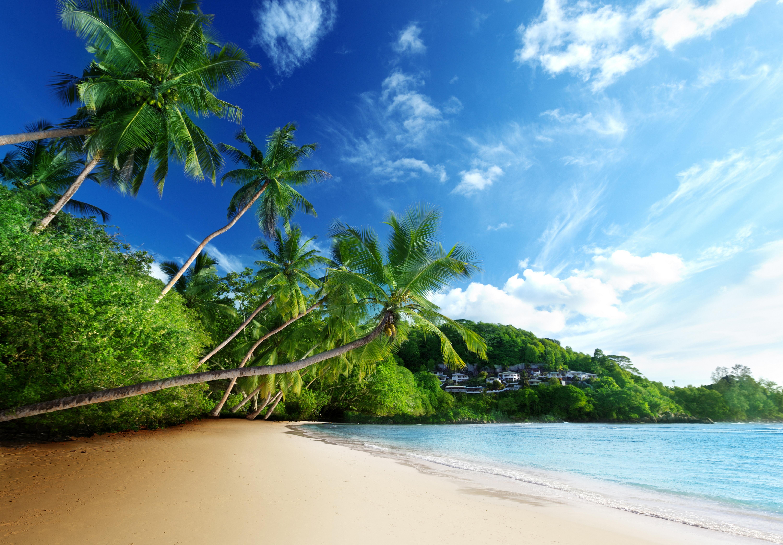 Tropical Beach Backgrounds: Tropical Eyecandy 5k Retina Ultra HD Wallpaper