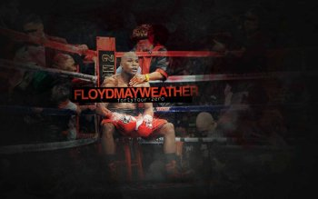 Preview Sports - Floyd Mayweather Art