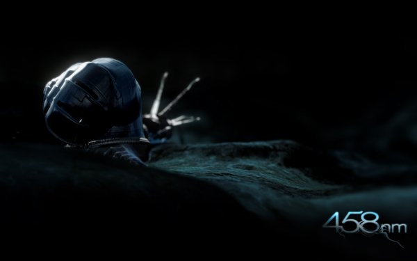 Animal Artistic Dark Snail HD Wallpaper   Background Image
