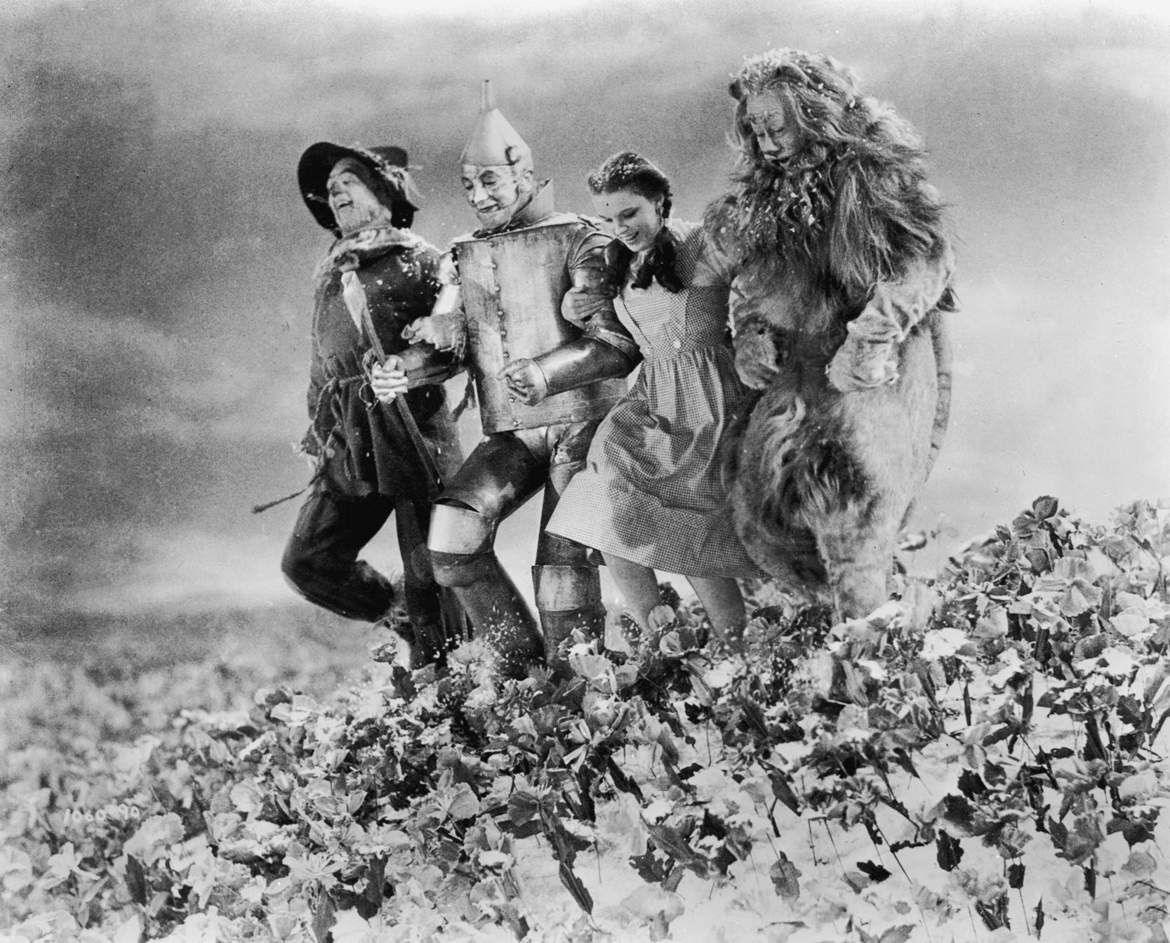 The Wizard Of Oz Wallpaper And Background Image 1667x1343 Id