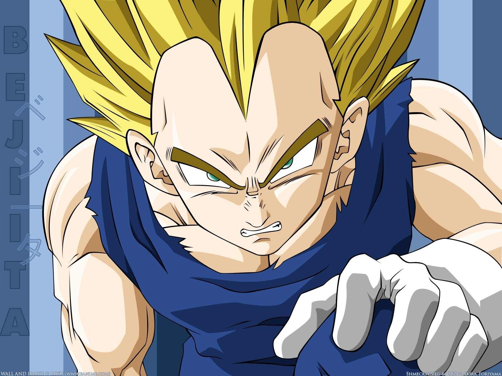 Anime - Dragon Ball Z  Vegeta (Dragon Ball) Wallpaper